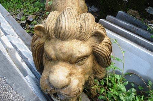 Sư tử đá ngoại lai bị vứt bên đường